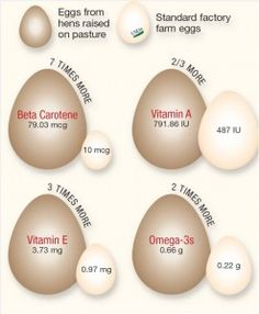 Pastured chickens also have seven times the amount of Beta Carotene, two-thirds more Vitamins A, three times the Vitamin E, and two times the Omega 3s.