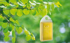 Ökológiai védekezés állati kártevők ellen I. Gardening, Lawn And Garden, Horticulture