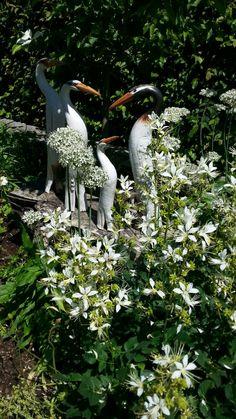 Meine weißen Vögel zwischen weißen Blumen im Garten einer Kundin Clay Animals, Garden Sculpture, Birds, Gardening, Bath, Outdoor Decor, Bird Of Paradise, Ceramic Birds, Cactus
