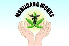 Toke Signals with Steve Elliott   Decade-Long Scientific Studies: Medical #Marijuana Works