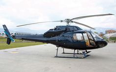 squirrel helicopter - Google Search