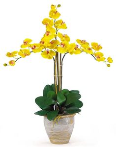 Phalaenopsis Silk Orchid with Planter in 8 colors | 27 inches
