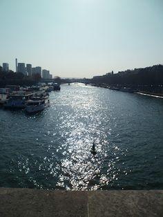 La Seine - Paris, France