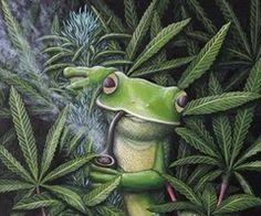 Green weed | via Weheartit