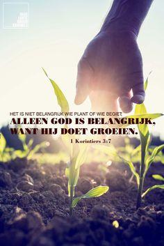 Het is niet belangrijk wie plant of wie begiet; alleen God is belangrijk, want hij doet groeien. 1 Korinthiers 3:7  #God  http://www.dagelijksebroodkruimels.nl/quotes-bijbel/1-korinthiers-37/