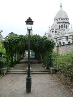 Pergola de vigne-vierge dans le parc Marcel Bleustein-Blanchet, parc de la Turlure, à  Montmartre, Paris 18e (75), août 2011, photo Alain Delavie
