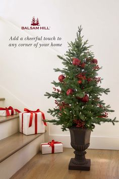 Balsam Hill™'s potted trees exude stylish charm that will delight family and guests alike. With a wide assortment of sizes and designs, our miniature trees bring cheer to your favorite spaces all throughout the year. Buy during #ChristmasinJuly and get Free Shipping!
