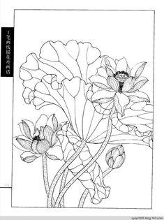 工笔画白描---荷花 - 水韵清香 - 水韵清香 Lotus Drawing, Line Drawing, Drawing Sketches, Botanical Drawings, Botanical Art, Lotus Plant, Floral Doodle, Sketch Design, Colouring Pages