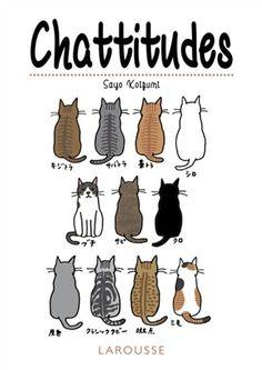 Pour comprendre le comportement de son chat en 150 situations illustrées décryptant ses attitudes, ses besoins et ses émotions.