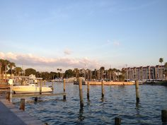 A top small walking community, Dunedin, FL is the site of the Highland Games, Dunedin Brewery and the Toronto Blue Jays spring training. Honeymoon Island, Highland Games, Clearwater Florida, Spring Training, Toronto Blue Jays, San Francisco Skyline, State Parks, New York Skyline