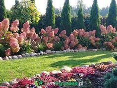 Landscaping Berm Ideas, Landscape Architecture, Landscape Design, Dream Garden, Home And Garden, Rock Garden Design, Green Park, Container Plants, Small Gardens