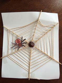Spinnenweb kastanje