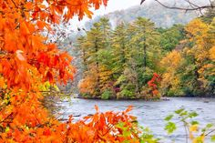 As summer slips into fall, it's time to grab your camera and get outside to capture the mangic of the changing seasons.