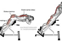 Illustration of 45-degree hyperextension exercise