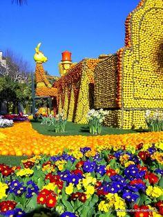 Fête du Citron à Menton  #visitcotedazur #frenchriviera