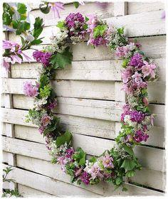 Bild könnte enthalten: Pflanze, Blume und im Freien