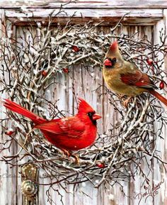Christmas wreath with cardinals
