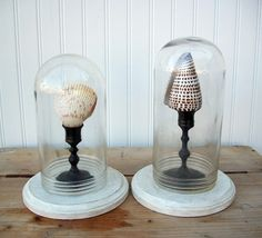 bell jar -- not sure I really like the shell, but I do like the idea of sticking something on a candlestick.