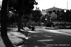 """IM VOLKSGARTEN   In Ruhe und Gelassenheit den """"Herrgott einen guten Mann sein lassen"""" - das geht im Volksgarten abseits vom innerstädtischen Trubel einfach herrlich. Hier ein Blick auf's Parlament. Vienna, Sidewalk, Walking, Street View, Outdoor, Pictures, Best Husband, Lawn And Garden, Simple"""