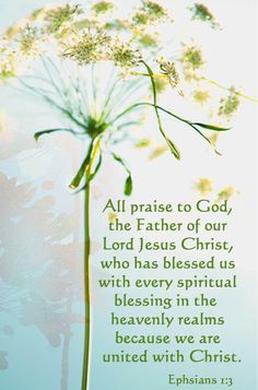 1. I am blessed with every spiritual blessing in the heavenly places in Christ.   Ephisians 1:3