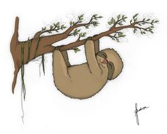 Baby-Faultier   Baby Sloth by pegamaus.de   Andrea Isserstedt