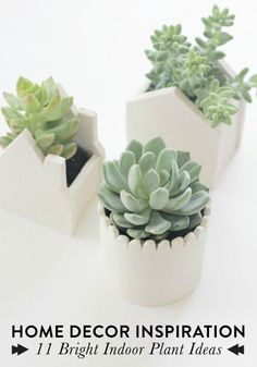 Simple plants, flowers or terrariums are easy ways to instantly brighten and cheer up any room in your home.