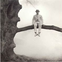 """Dick Sears in Tree"",1996. By Rodney Smith. S)"