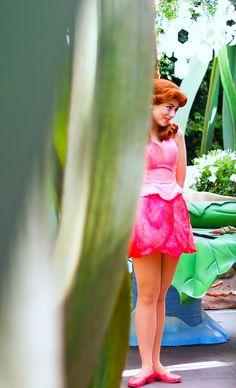 Rosetta © The Magic Kingdom, Walt Disney World