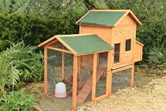 Image result for beautiful chicken coops- PAINTED WHITE WITH WHITE COLORBOND ROOF