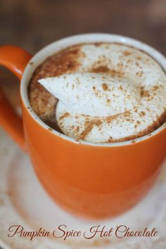 Pumpkin Spice Hot Chocolate - so warm and comforting!