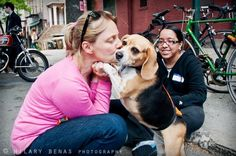 Armstrong with Miss Bagel the beagle at one of Badass Brooklyn's recent adoption events in Brooklyn. Photo by Hilary Benas via Badass Brooklyn's Facebook.