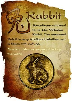 Wood Rabbit. Chinese Astrology. I'm actually a 'water' Rabbit.  I do seem to lead with my emotions and struggle to stay centred.  I listen to others opinions too much and this has hindered me in life.