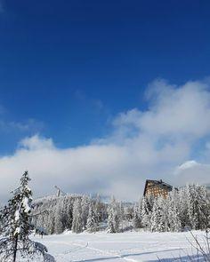 Nič viac #štastie #vďačnosť #energia #vysoketatry #hightatras #strbskepleso #praveslovenske #pureslovakia #energyflow Snow, Mountains, Nature, Travel, Outdoor, Instagram, Outdoors, Naturaleza, Viajes