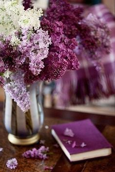 BEAUTIFUL LILAC COLOR