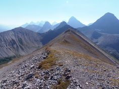 Where you'll find 4 of the best hikes in the Alberta Rockies -Tent Ridge - Photo by Chuck Newyar