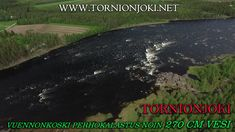 Vuennonkoski Fly Fishing in Tornio River - Vuennonkoski Perhokalastus. #tornionjoki #vuennonkoski #matkakoski #fishing #kalastus #riverbug #putkiperhot #finnlures #salmon #salmonfishing #saumon #lachs #laks #spinfluga #punttikalastus #flyfishing #perhokalastus #rangerkalavinkit #repofly #mustakettu #lax #laxfiske #visitlapland #visittornio #tornio #lohenkalastus #kukkolankoski #kattilakoski #lohensoutu #lohivaappu #vaappu #heittokalastus #korpikylä #summer #sights #sweden #lohiperhot #diy… Visit Sweden, Salmon Fishing, Fly Fishing, Finland, Photo S, River, Summer, Pictures, Salmon