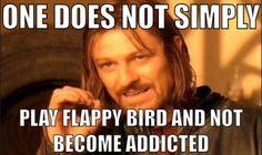 Flappy birds!