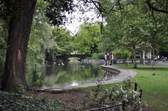 Dublin, Ireland...this is in the center of the city. I would give anything to be there today watching the black swans.