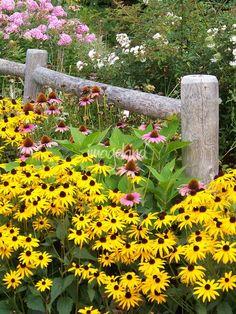 Fenceline Perennial Garden