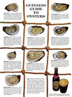1952 Guinness Beer Guide to Oysters Vintage Poster (created by Ogilvy & Mather) Huur de Oesterkoning in voor uw oesterparty www. Antipasto, Types Of Oysters, What Is Content Marketing, Native Advertising, Advertising History, Advertising Poster, Oyster Recipes, Swipe File, Oyster Bar