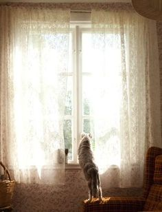 watching for the arrival of family with a heart full of happy <3 :)