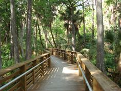 Places to Hike, Bike, Run or Ride:   Off-Road Bike, Hike, & Riding Options:  Trails around the Loxahatchee River, Jupiter,  Riverbend Park and Jonathan Dickinson Park