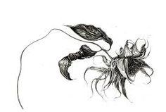 Image result for dead flowers art