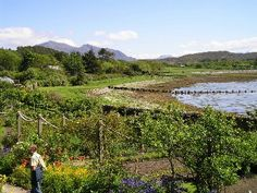 Inverewe Gardens, West Coast of Scotland close to Poolewe.