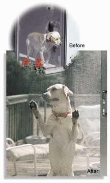 Phifer Pet Screen - Ask for Phifer Pet Screen by name.