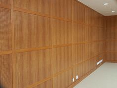 Acoustic panel Acustic Panels, Concert Hall, Wood Paneling, Acoustic, Lounge, Ps, Interiors, Furniture, Google Search