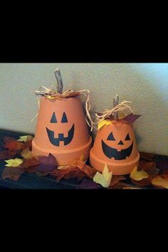 Potted Pumpkins! Adorable!