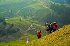 Turistii straini au cheltuit anul trecut in Romania miliarde lei Like A Local, Resort Spa, Oh The Places You'll Go, Beautiful World, Beautiful Places, Romania, Family Travel, Adventure Travel, Vacation