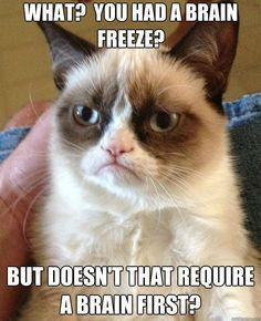 Grumpy quotes, grumpy cat humor, grumpy cat meme, funny grumpy cat quotes ...For the best humor and hilarious memes visit www.bestfunnyjokes4u.com/lol-best-funny-cartoon-joke-2/ - Tap the link now to see all of our cool cat collections!