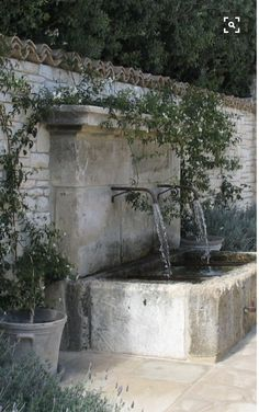 Soothing water sounds for a walled garden.